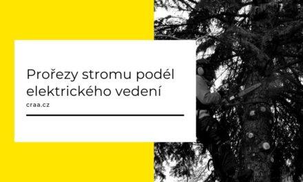 (Čeština) Prořezy stromu podél elektrického vedení